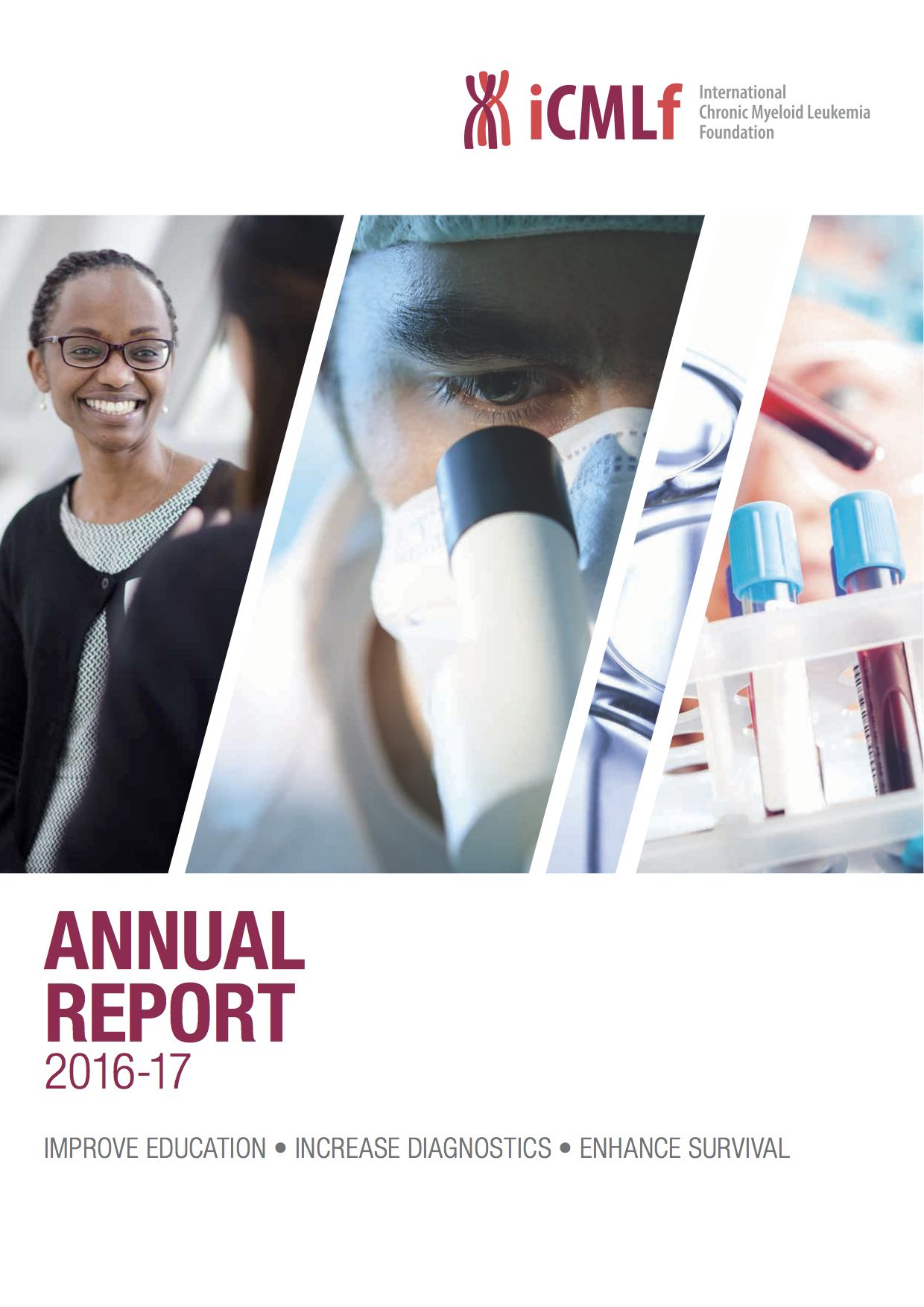 Annual Report 2016 17 LR Cover