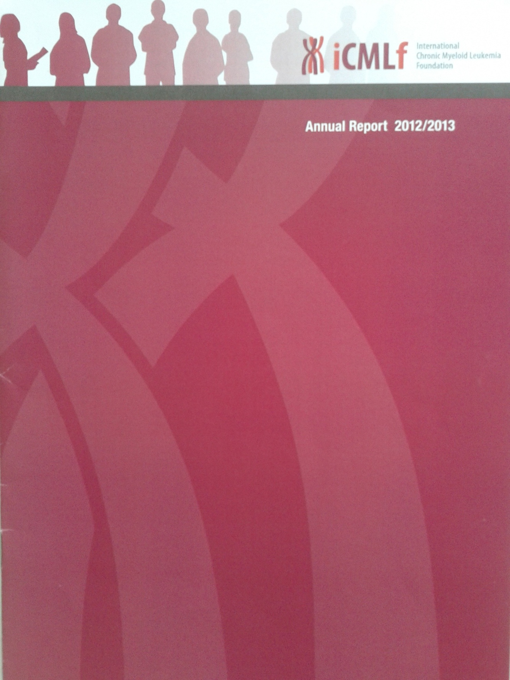 Picture Annual Report 2013